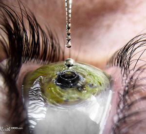 prezbiopia krople do oczu